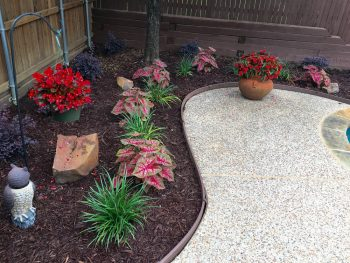 flower bed with mulch lanscaping coppell texas