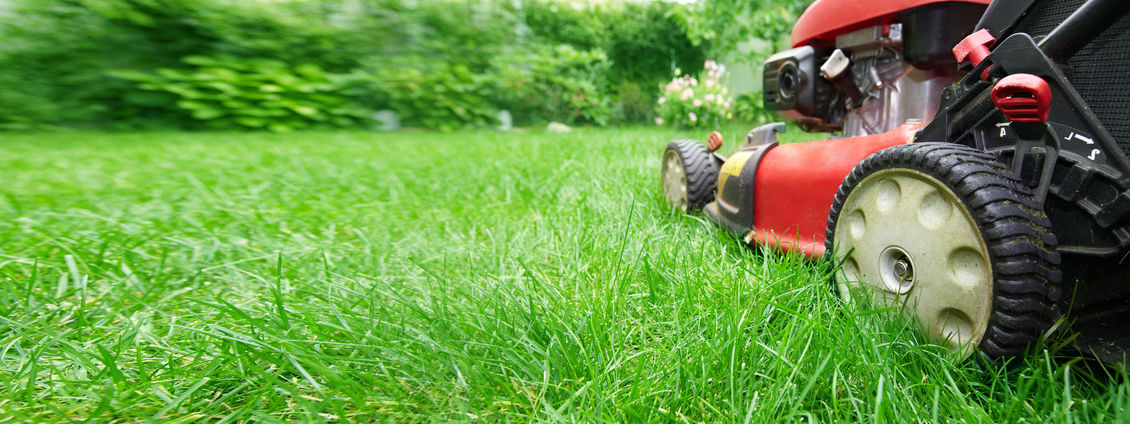 lawn care coppell, tx - mowing grass yard