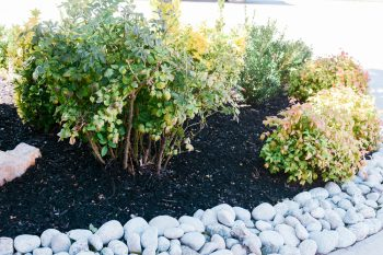 Landscaping with river rocks around your home or office