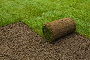 Quality Sod Installation Lawn Care Coppell