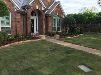 sod installation in Coppell Texas