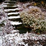 winter-landscaping